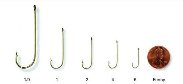 Fishing with basics of hooks, bobbers and sinkers