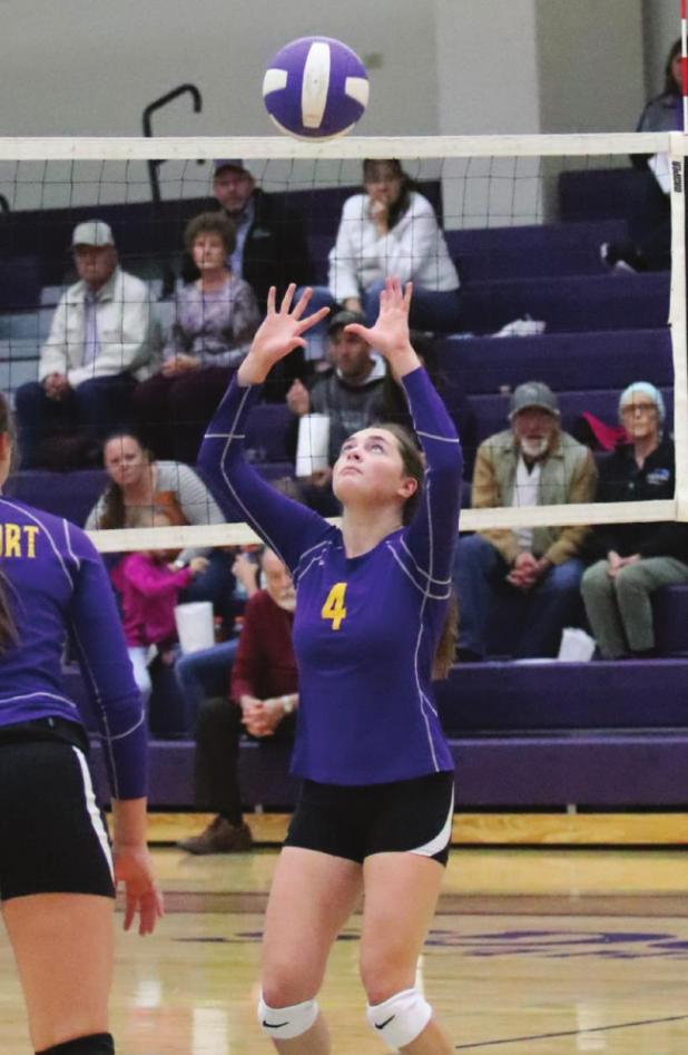 SPVA names all-conference volleybal