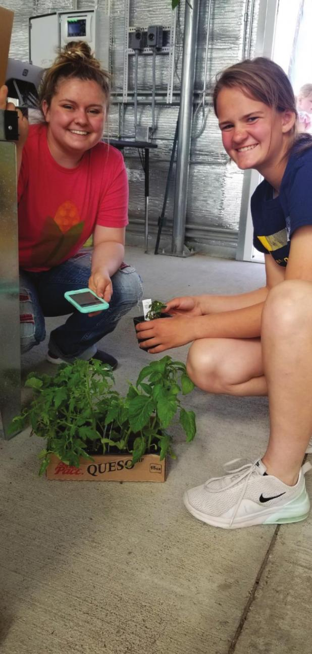 Get your plants at the FFA greenhouse