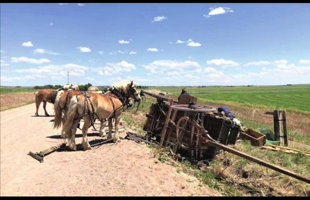 Chuck wagon and mule teams make their way through Morrill County